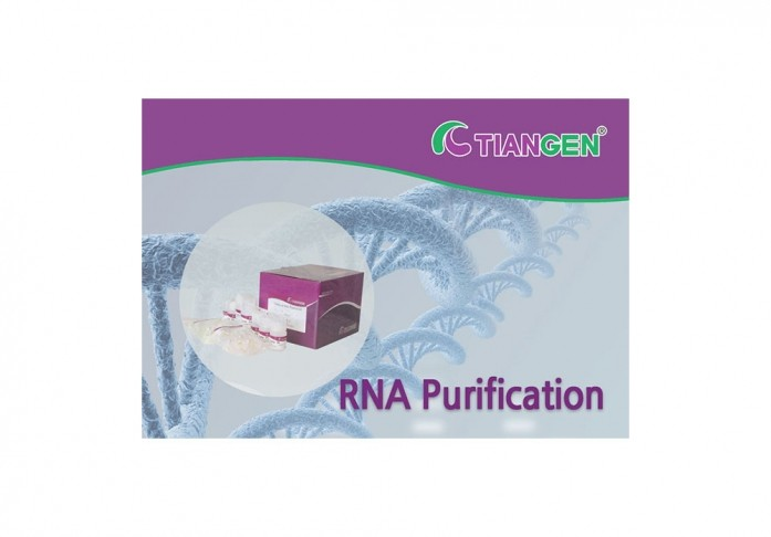 RNAprep pure Kit (For Tissue), 50rxn, DP431